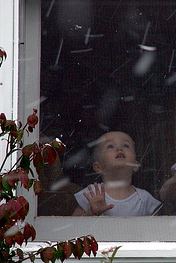 a child ponders the first snow