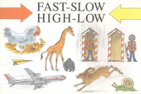 Cover of the book Fast-Slow High-Low