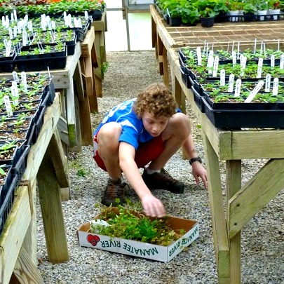 working in the greenhouse on the Appalachia mission trip